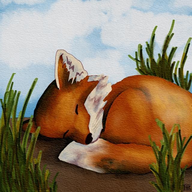 Fox_3