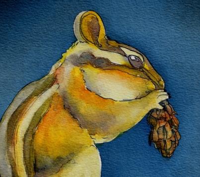 Squirrel_.jpg